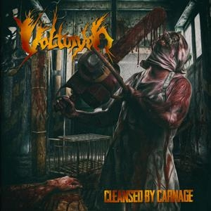 Volturyon - Cleansed by Carnage - Artwork